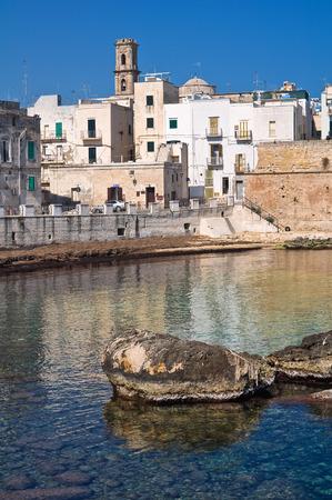 fortified wall: Fortified wall  Monopoli  Puglia  Italy