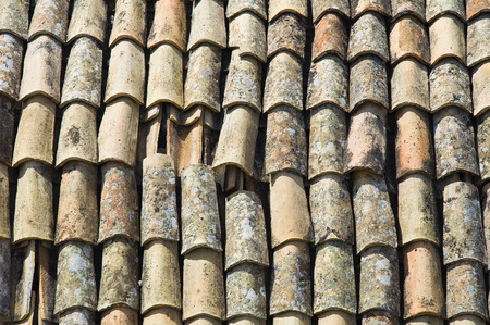 rooftile: Tile roof. Stock Photo