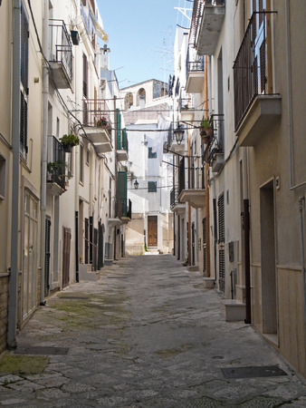 This is a characteristic alley of Conversano. Apulia.