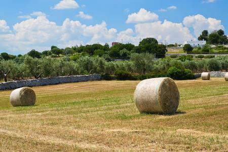 Haystack. Locorotondo. Puglia. Italy.