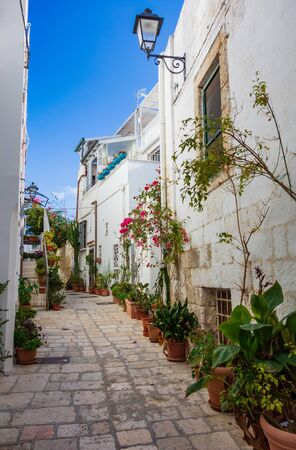 Alleyway. Polignano a mare. Puglia. Italy 免版税图像