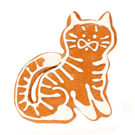 Gingerbread cookie cat isolated on white