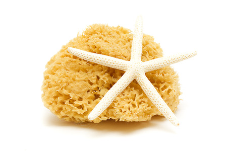 absorbent: Natural Bath Sponge and Starfish Isolated