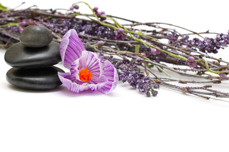 Spa stones and spring flowers - zen concept