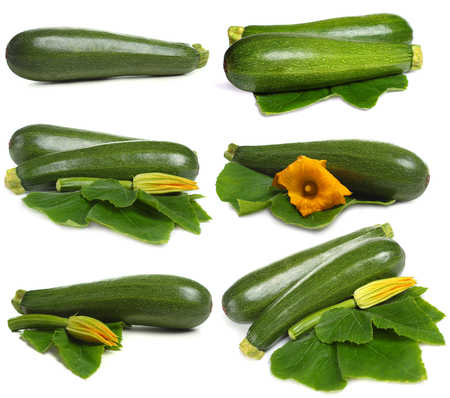 zucchini vegetable: Zucchini vegetable set isolated on white background
