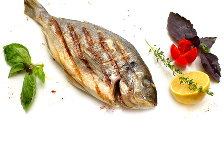 gilt head: Gilt-head sea bream fish on white background Stock Photo