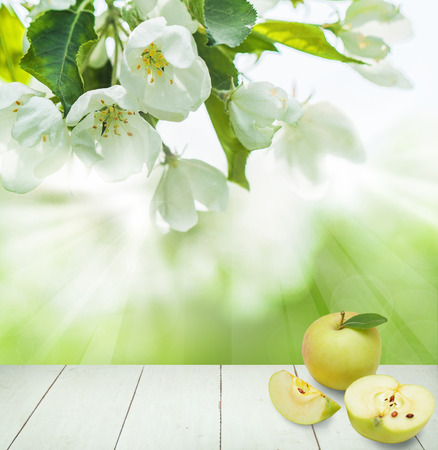 Spring Health Background with Green Apple Fruit, Spring Flowers, Green Leaves, Bokeh Light and White Empty Wooden Table