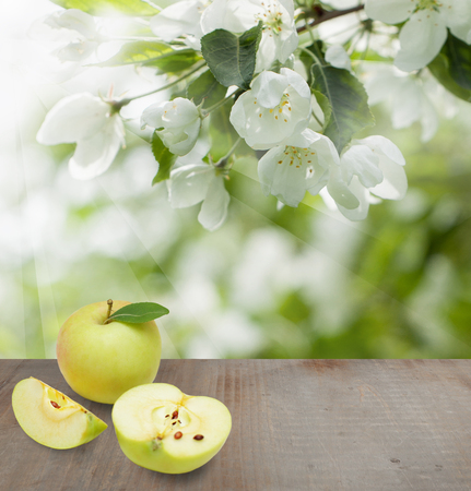 Season background with apple fruits, green leaves, white spring flowers and gray wooden table