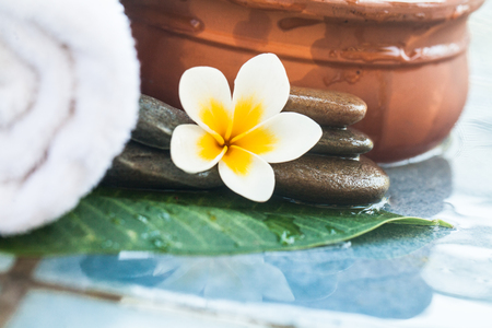 Tropical white Flower and stones for massage treatment on blue background. 免版税图像