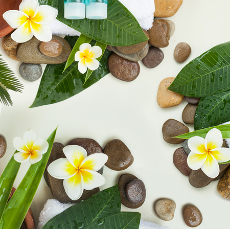 Spa background with green leaves, stones, flowers and cosmetics on white