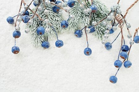 Blue berries and green Christmas fir branch on white snow. Christmas composition on white background Stock Photo