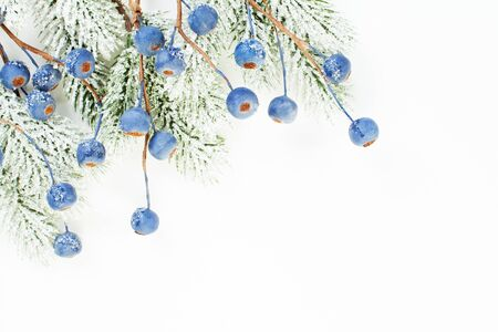 Christmas border of Xmas tree branch and blue berries isolated on white background Zdjęcie Seryjne