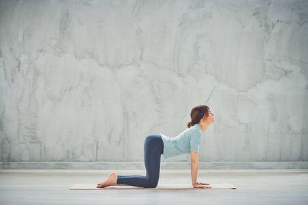 Gorgeous slim brunette doing Cat yoga pose on mat.