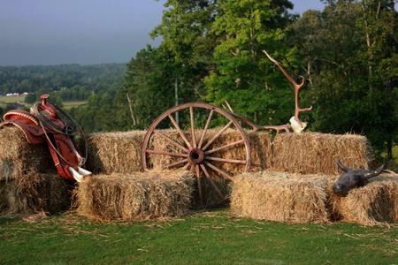 Saddle Bales of Hay Western Wheel