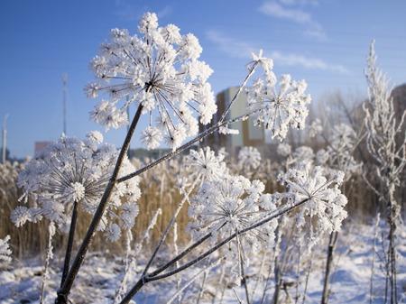 minsk: Beautiful parks in Belarus, rivers in Minsk Stock Photo