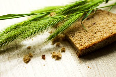 secale: green rye and bread, can be used for design of illyustation