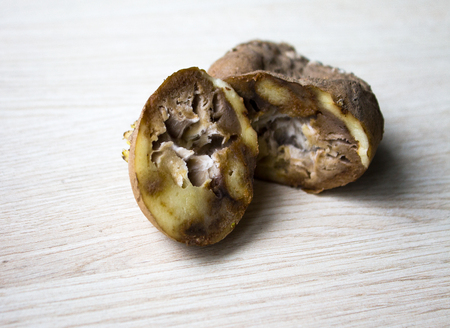 de verwende aardappelen, kan worden gebruikt voor illustraties en ontwerp