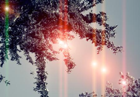 Winter photos, instagram effect of soft light