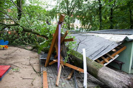 the aftermath: Tornado in the city of Minsk, Republic of Belarus, consequences of natural disaster of destruction of inhabited constructions more than 100 trees are also tumbled down