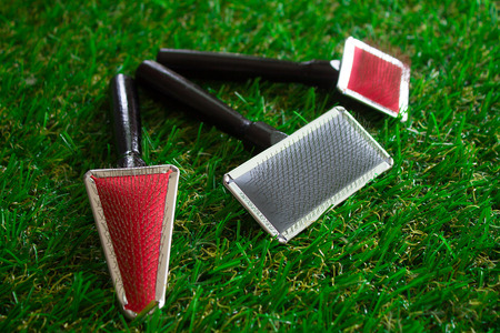 Acessories for the grooming of the dog,close up