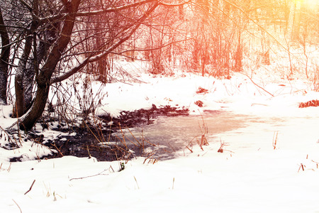 goodliness: Winter landscape. Snow and dirt in the park. Thawed patches. Effect of the soft sun Stock Photo