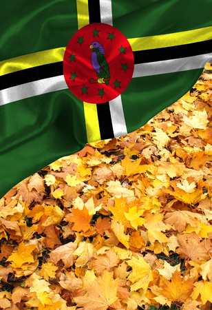 Grunge colorful flag Dominica, with copyspace for your text or images.