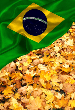Grunge colorful flag Brazil, with copyspace for your text or images.