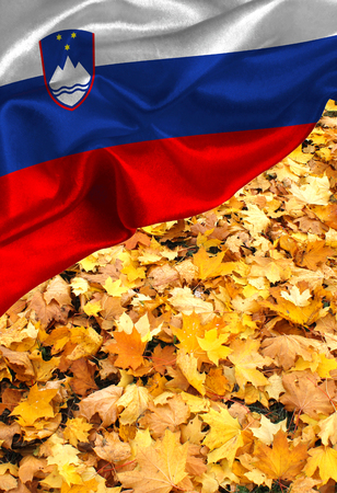 Grunge colorful flag Slovenia on autumn leaves, with copyspace for text or images. Stock Photo