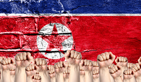 Male hands clenched in a fist raised up against the backdrop of a destroyed brick wall with a flag of North Korea. The concept of the labor movement from the people, the power and strength of civil society.