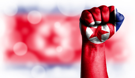 Flag of North Korea painted on male fist, strength,power,concept of conflict. On a blurred background with a good place for your text.