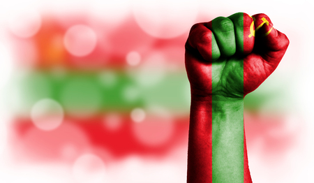 Flag of Transnistria painted on male fist, strength,power,concept of conflict. On a blurred background with a good place for your text. Stock Photo