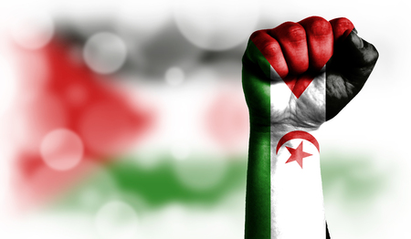 Flag of Western Sahara painted on male fist, strength,power,concept of conflict. On a blurred background with a good place for your text.