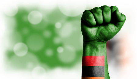 Flag of Zambia painted on male fist, strength,power,concept of conflict. On a blurred background with a good place for your text.