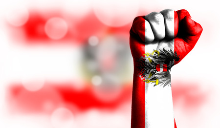 Flag of Austria painted on male fist, strength,power,concept of conflict. On a blurred background with a good place for your text.