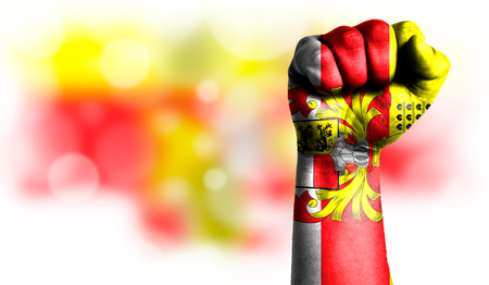 Flag of Carinthia painted on male fist, strength,power,concept of conflict. On a blurred background with a good place for your text.