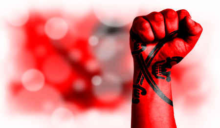 Flag of Pirates red painted on male fist, strength,power,concept of conflict. On a blurred background with a good place for your text.