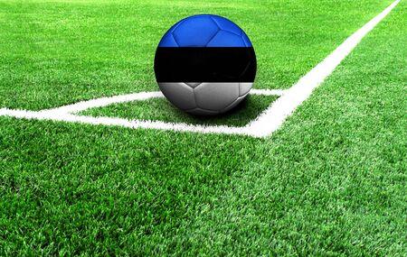 Fußball auf der grünen Wiese, Flagge Estlands