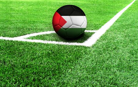 soccer ball on a green field, flag of Palestine