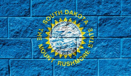 Flag State of South Dakota close up painted on a cracked wall Reklamní fotografie
