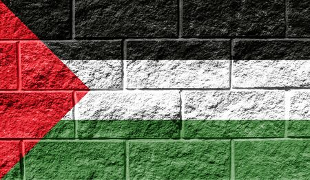Flag of Palestine close up painted on a cracked wall 写真素材