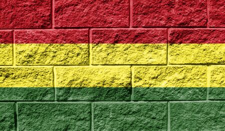 Flag of Bolivia close up painted on a cracked wall Reklamní fotografie