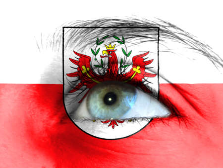 Close up view of a young girl. The flag of Tyrol is painted on the girl face.
