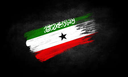 smear of paint in the form of the flag of Somaliland close-up on a black background
