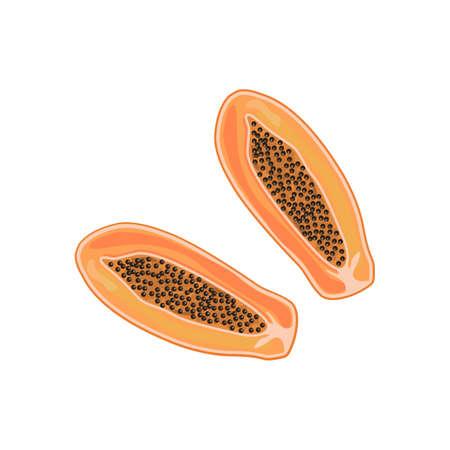 Ripe papaya cross section, half exotic delicious fruit with black seeds. Flat vector cartoon illustration isolated on white background Ilustração