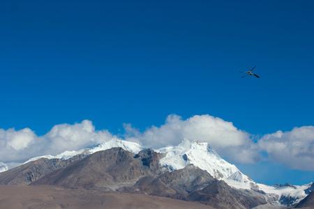 A snowy mountain flying bird