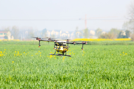 Drone spraying pesticide