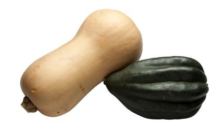Both butternut and acorn squash
