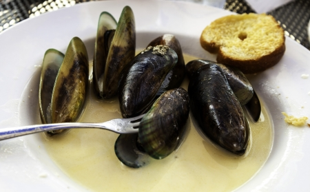 Mussels in sherry garlic sauce  Stock fotó
