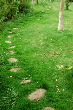 raod: rock raod on grass field Stock Photo