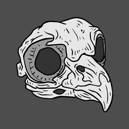 deer skull: Isolated black and white vector Bird skull